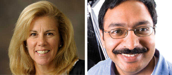 Carolyn Beck and Srinivasa Salapaka