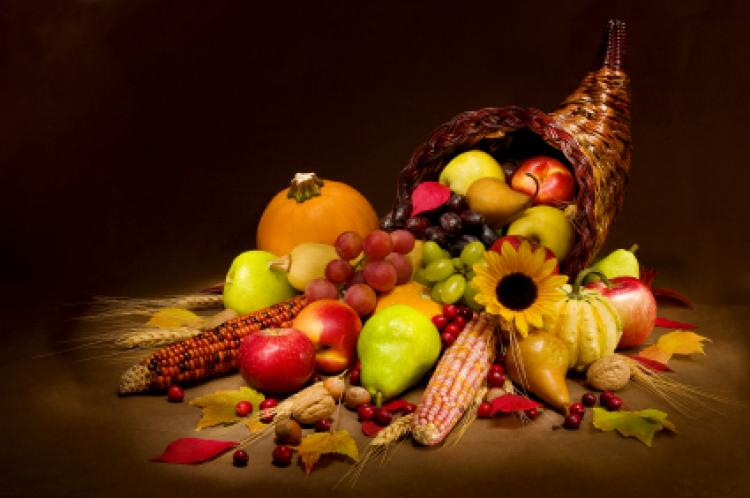 Happy Thanksgiving, College of Education students!