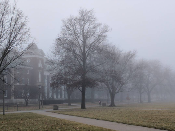 The Quad in fog: Warm weather in mid-January created vivid scenery on campus.