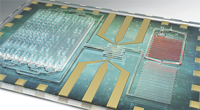 Image of diagnostic device aimed at detecting sepsis with single drop of blood.