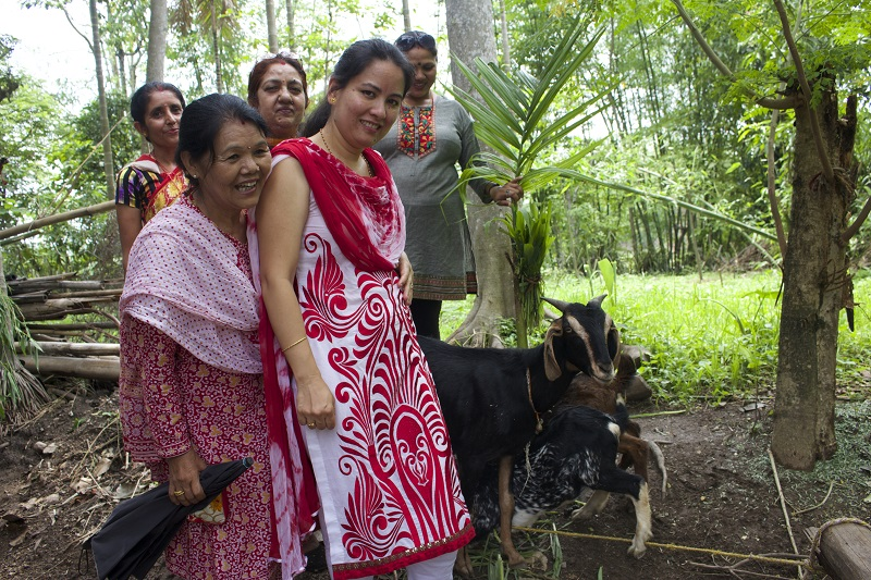 Nepali women with their healthy goats.