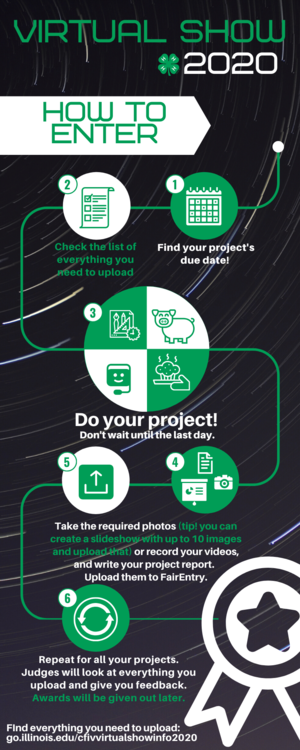 infographic on how to do a virtual show entry. 1. Find your project's due date. 2. Check the list for what you need to upload. 3. Do your projects! 4. Take your photos or video, create a slideshow, write your project report. 5. Upload the materials to FairEntry. 6. Repeat for all your projects. Find everything you need at http://go.illinois.edu/cfivvirtualshowinfo2020