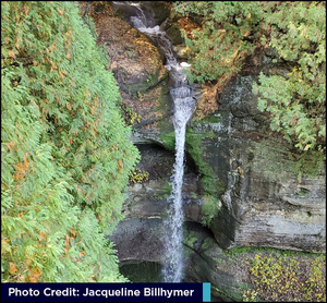 Waterfall picture take by Jacqueline Billhymer