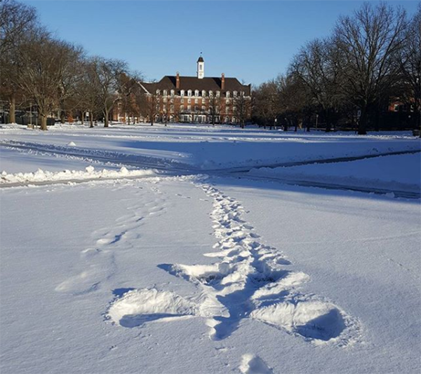 snow angel on Illinois Quad