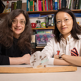 May Berenbaum and Ling-Hsiu Liao