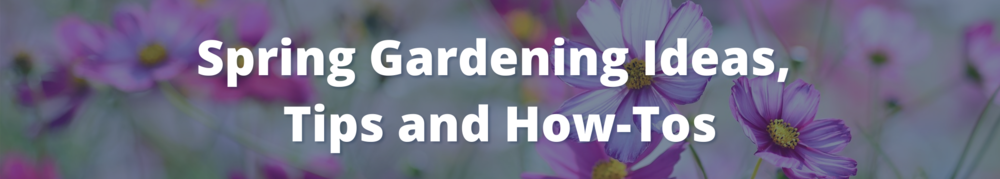 graphic of spring wildflower and text: Spring Gardening Ideas,  Tips and How-Tos
