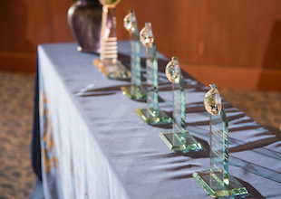 photo of international achievement awards on display table with light creating an elegant shadow