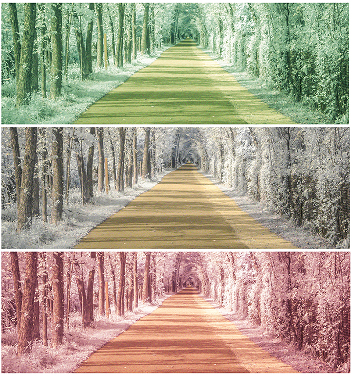 The same image repeated three times in different colors of a pathway.