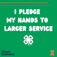 I pledge my hands to larger service written on green background