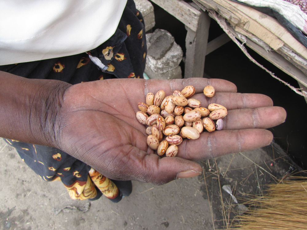 Beans from the market in Lusaka, Zambia