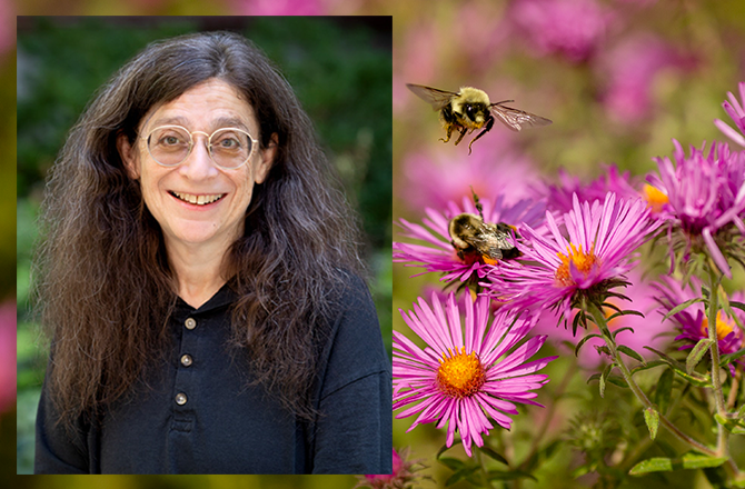 May Berenbaum with bees and flowers