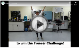 mygreenlabs freezer challenge video