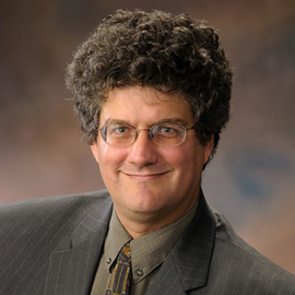 Head shot of Professor Jonathan Sweedler