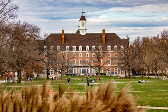 A picture of the quad on the UIUC campus.