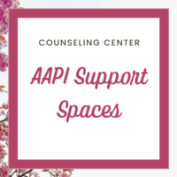 graphic that says AAPI Support Spaces
