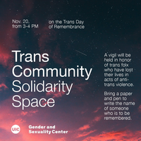 sunset with shooting star over Trans community solidarity space flyer