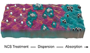 conseptural model showing carbon spheres in oil spill