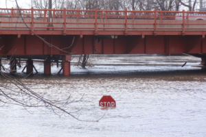 floodwaters nearly covering stop sign