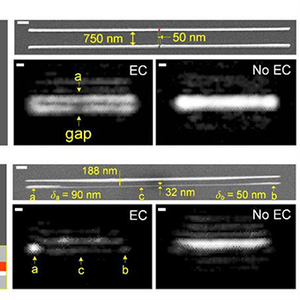 Experimental visualization of individual nanowires and their and fabrication imperfections.