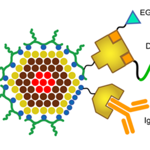 The structure of a quantum dot.
