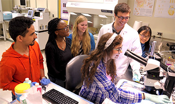 Students in the 2015 Discoveries in Bioimaging in REU at the University of Illinois at Urbana-Champaign looking at cells through microscope.